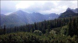 Dolina Gąsienicowa i jej otoczenie - 23 lipca 2013