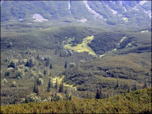 Czarna Dolina Gąsienicowa - spojrzenie z trawersu Małego Kościelca - 23 lipca 2013
