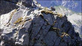 Orla Perć - spojrzenie na drabinkę nad Kozią Przełęczą - 29 lipca 2013