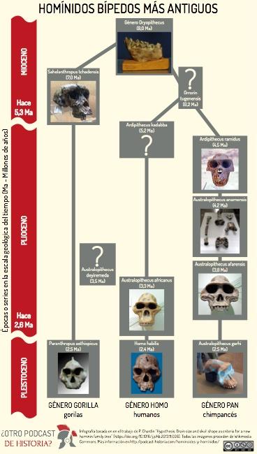 Homínidos bípedos más antiguos