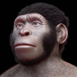 El Homo naledi y la datación de fósiles