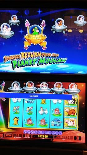 pure casino yellowhead Casino