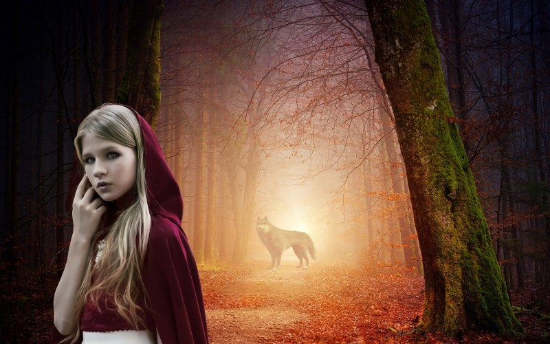 Red Riding Hood in a forest with a wolf in the background