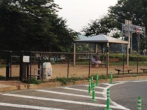 高坂SAドッグラン2