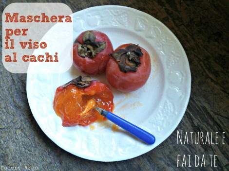 Mascheravisocachi