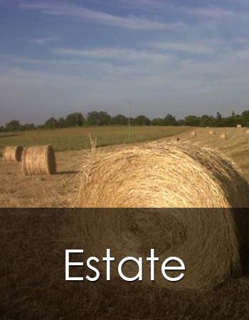 Estate in Maremma