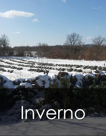 Inverno in Maremma