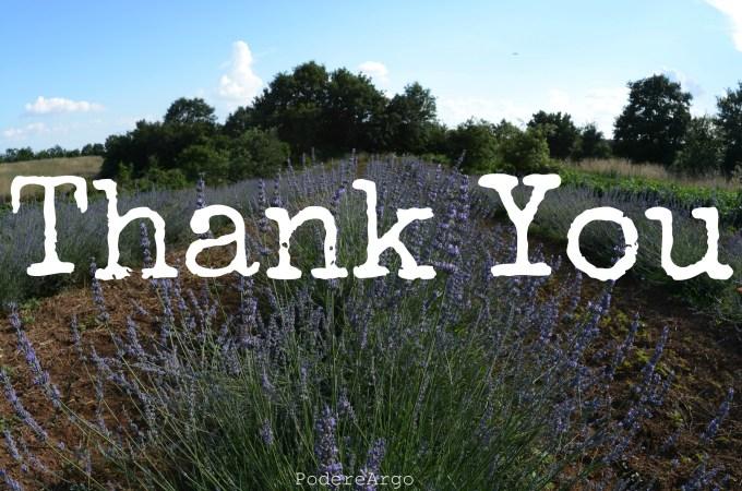 Come allenare la gratitudine