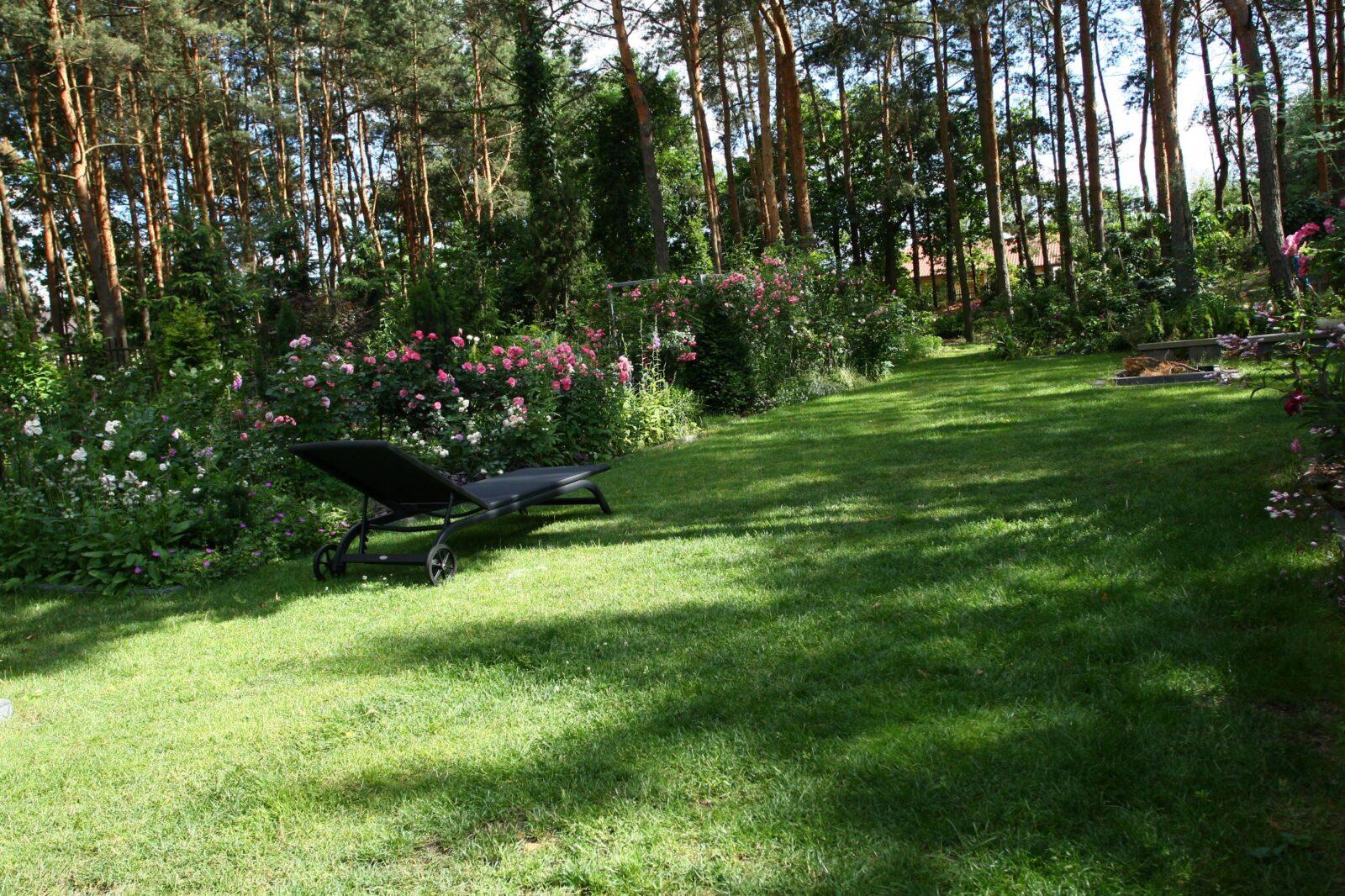 ogród Joli 4