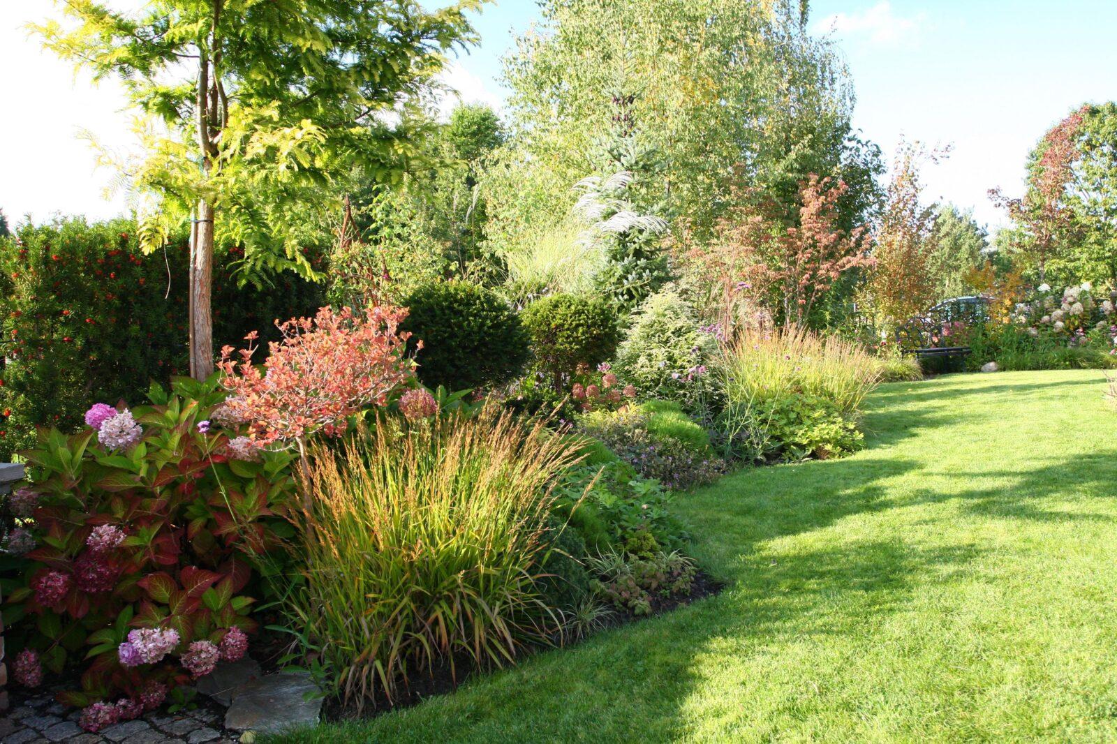 ogród Ani we wrześniu