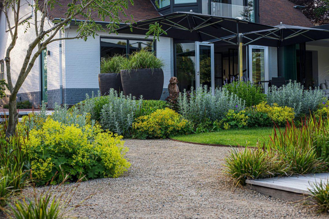 proj.: Hoog Design; w całym ogrodzie powtarza się zestawienie żółtego przywrotnika i szarej bylicy