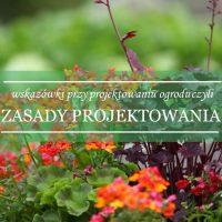 Zasady projektowania - jak osiągnąć harmonię w ogrodzie?