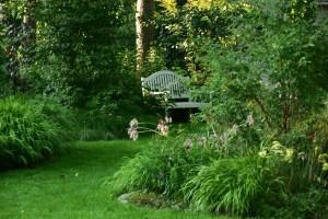 ogród cienisty Izy - lipiec; ogród w cieniu; hakonechloa; ławeczka;