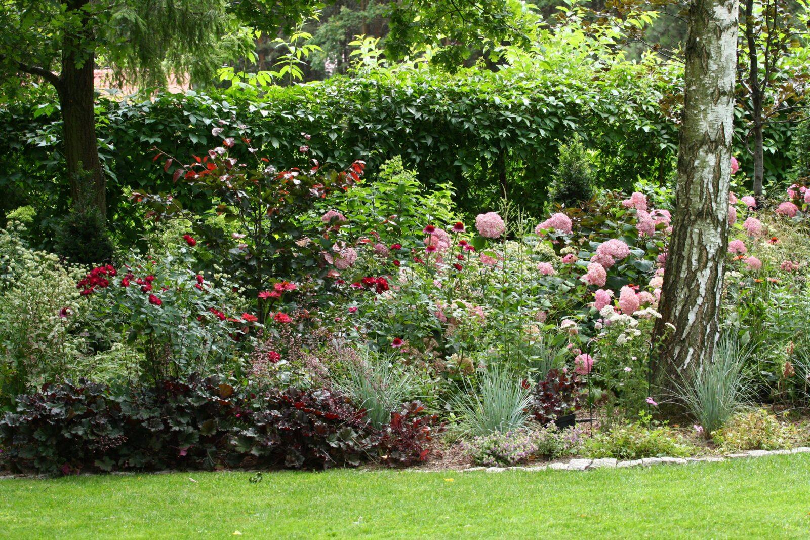 kwiaty w ogrodzie cienistym