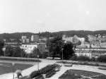 Gdynia Kamienna Góra