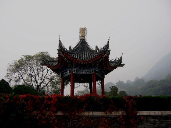 Chiny pagoda poprawiony100_2370