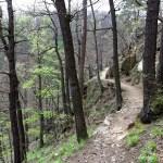 Ścieżka Hochbergów w wąwozie rzeki Pełcznicy