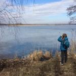 Ruda Milicka – ścieżka przyrodnicza w krainie stawów
