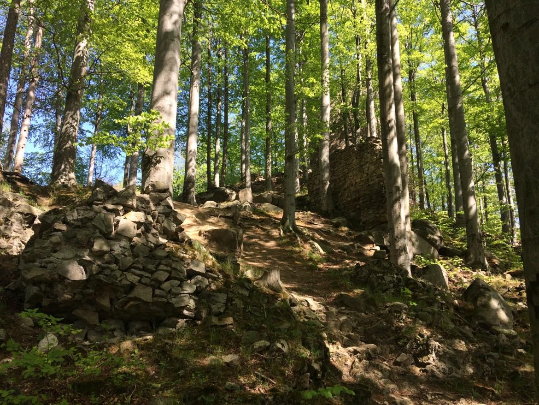 ruiny zamku; kraj olomoucký; Kraj ołomuniecki atrakcje; góry rychlebskie; RYCHLEBSKÉ HORY; sudety