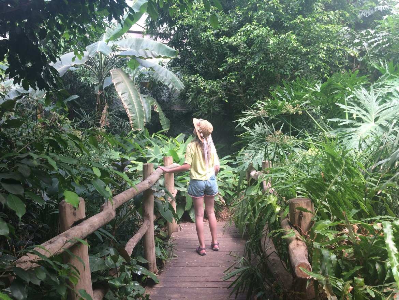 ZOO Safarii Dvůr Králové