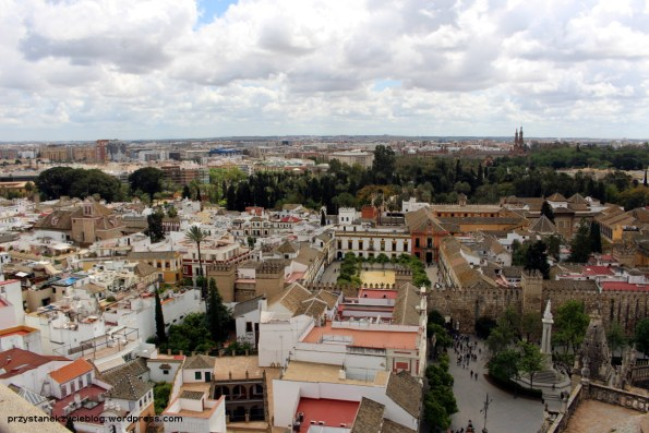 seville_cathedral28