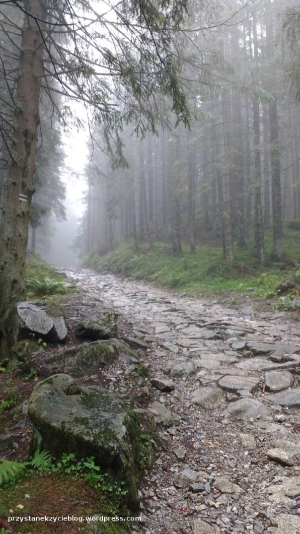 kasprowy_wierch_tatry5