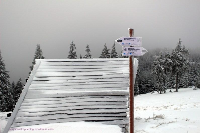 schronisko pod snieznikiem2