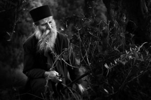 Europa, Griechenland, Athos, ein Mönch beschneidet einen Olivenbaum, aufgenommen am 10.11.2009 © 2012 Florian Manz / Agentur Focus