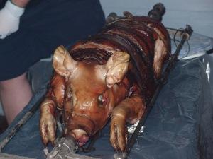 Porktober pig