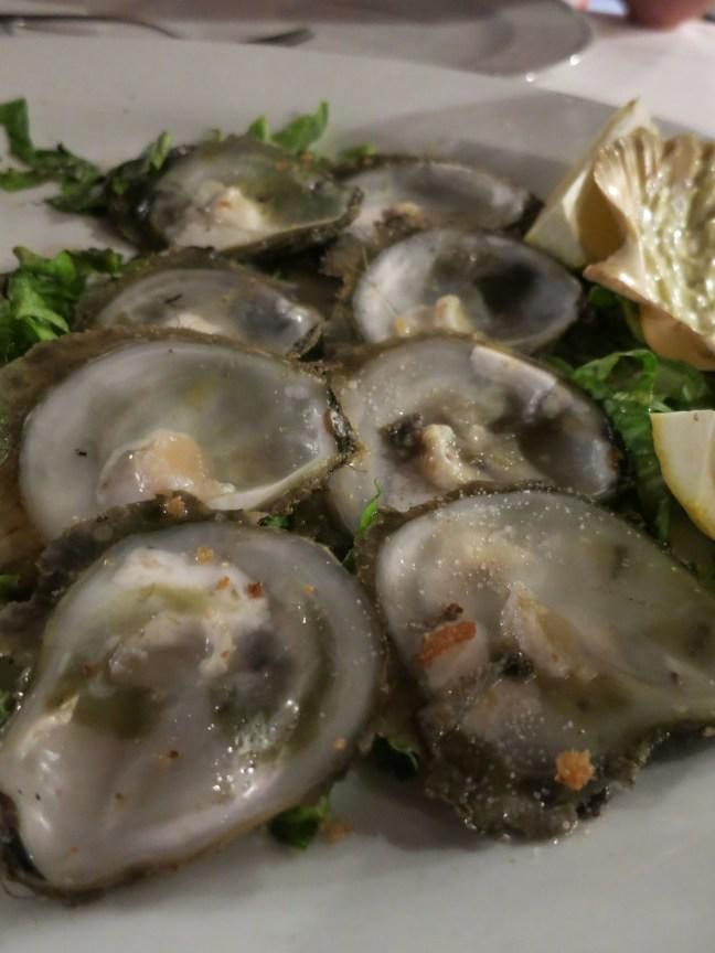 Ostrea Edulis oysters in Ston, Croatia
