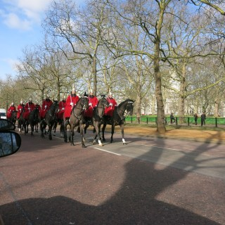 horsies at Buckingham Palace