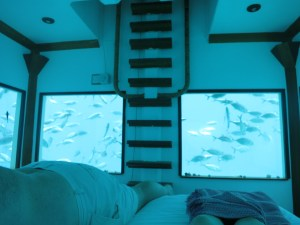 Sleeping with the fishes in the underwater room