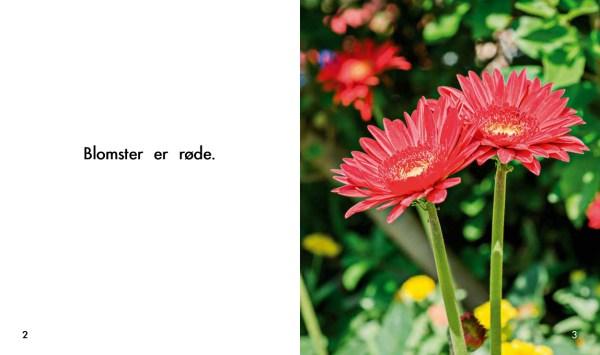 Solstrålebøger Blomster opslag