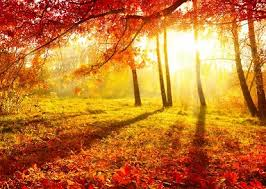 Aires de otoño