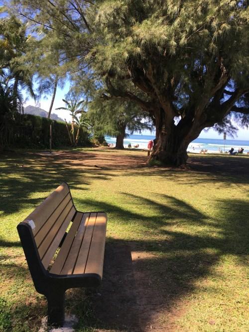 poem is on bench back