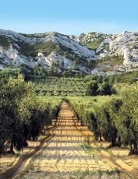 Route en Provence