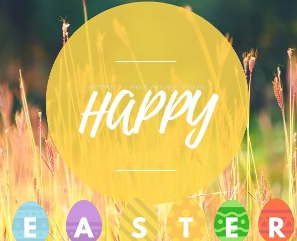 Best collection of happy easter messages and greetings happy easter best messages and greetings m4hsunfo