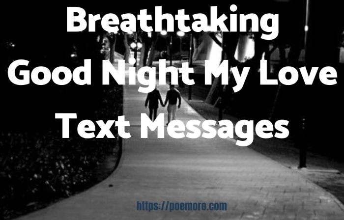 60 Breathtaking Good Night My Love Text Messages
