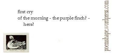haiku-mornings-first-cry