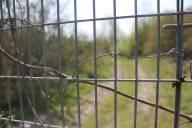 Fencing II