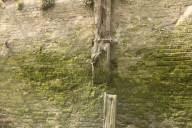 Deptford Creek Walls