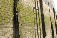 Walls of Deptford Creek