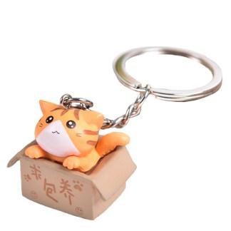 Oranje kat in doos sleutelhanger
