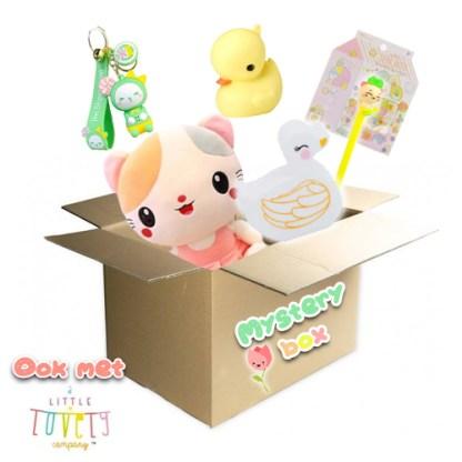 XL kawaii Lente mysterybox