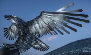 Pássaro3