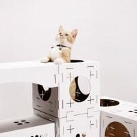 Casa para Gatos de Papelão DIY