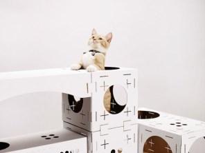 houseforcats-1