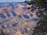 Grand Canyon (22)