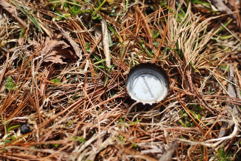 Bottle Cap in Grass and Pine Needles