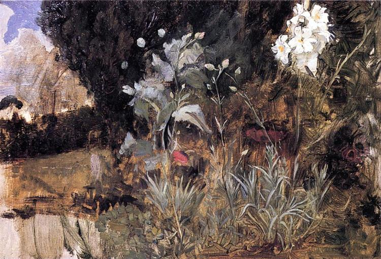 waterhouse Flower Sketch for the Enchanted Garden